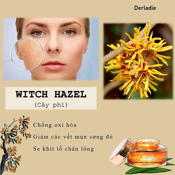 Gel Dưỡng Da Derladie Witch Hazel Perfect Vitamin Gel Cream