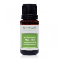 Tinh Dầu Scentuals Melaleuca Alternifolia Tea Tree Pure Essential Oil 10ml